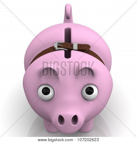 Pig piggy bank in times of economic crisis