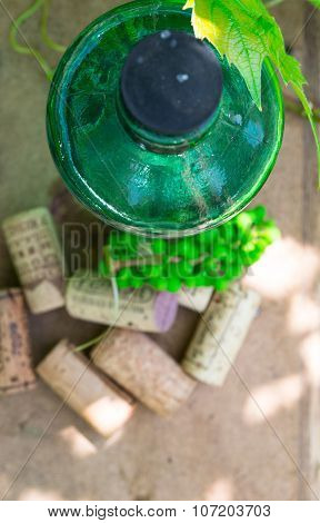 White wine bottle with white grape on garden table. Top view