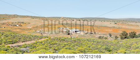 Panorama Of A Farm In Namaqualand
