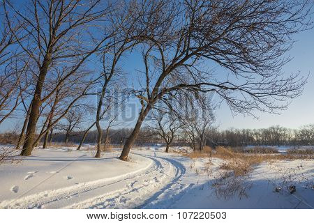 Countryside road through winter forest