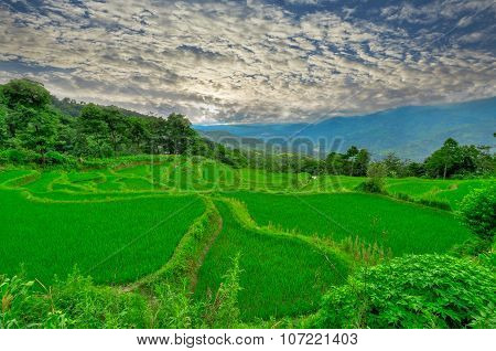 South East China, Yunan Rice Terraces Highlands
