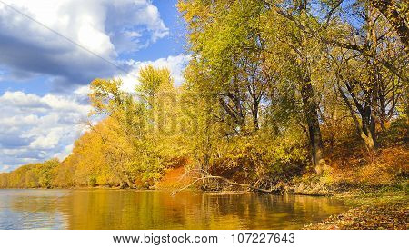 Autumn or Fall Foliage. River Shoreline with Yellow Tree Leaves.