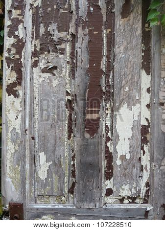 Extreme Peeling Paint on Vintage Door