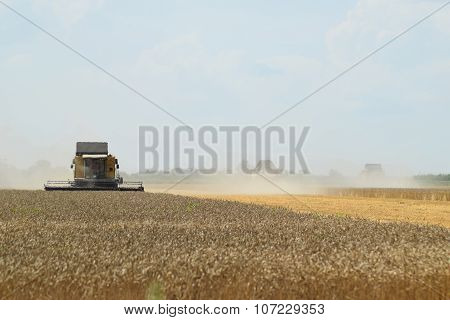 Harvesting By Combines