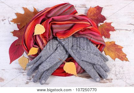 Womanly Woolen Clothes And Autumnal Leaves On Old Rustic Wooden Background