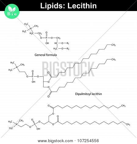 Lecithin Chemical Structure