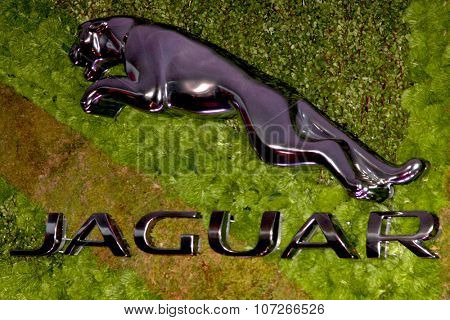 LOS ANGELES - MAY 2:  Jaguar Atmosphere at the Jaguar North America and Britweek Present