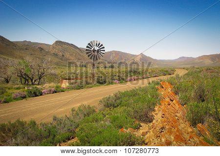 Karoo serenity