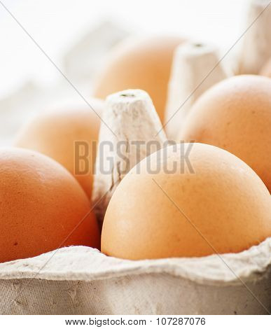 Organic eggs from pasture-raised chickens.