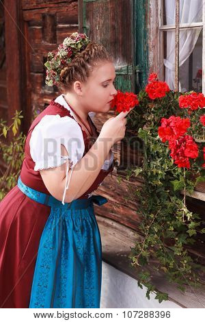 Young, Bavarian, chubby girl in dirndl smelling a geranium