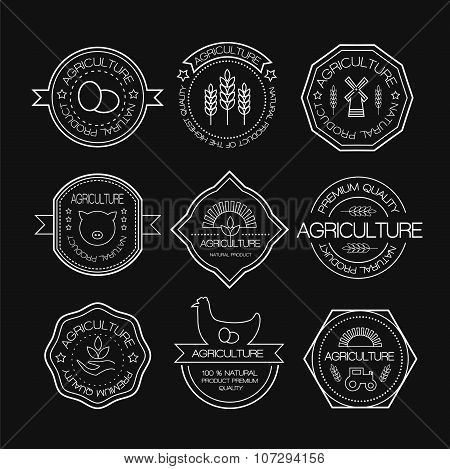 Set Of Vintage Style Elements For Labels And Badges