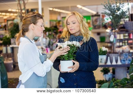 Florist assisting female customer in buying flower plants at store