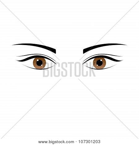 One beautiful brown color caucasian female eye wide open with eyebrow and eyelash.