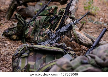 Machine Gun And Assault Rifle On Ground In Forest