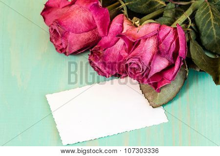 Dry Roses Bouquet And Blank Card