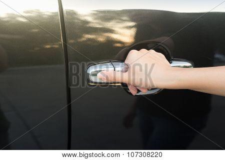 Hand And Handle