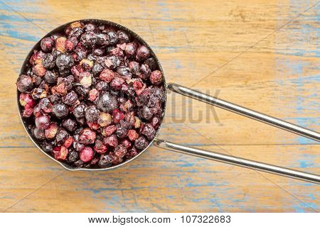 freeze dried elderberries in a metal measuring scoop against grained wood
