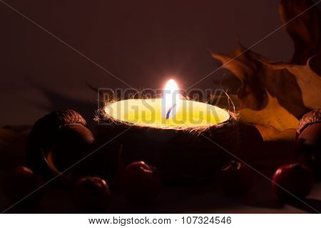 Lighted Candles with pine cones