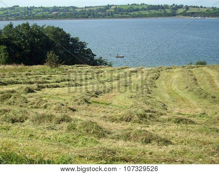 Recently cut hay meadow