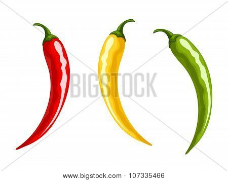 Red, yellow and green hot chili pepper. Vector illustration.