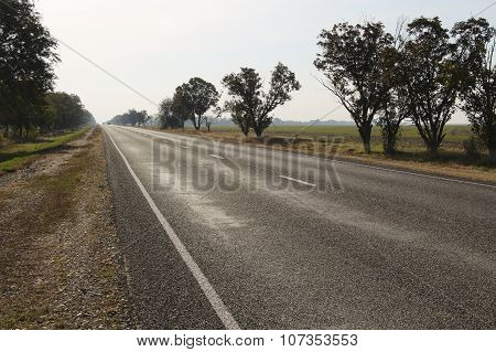 Asphalt Road And Roadside