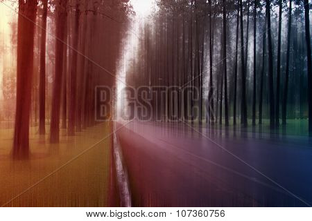 Blurred Abstract Background Photo Of Forest And Road With Surreal Motion Blur Effect