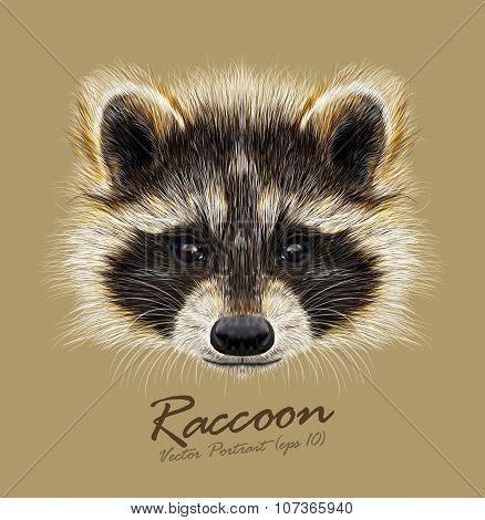 Vector Illustrated Portrait Of Raccoon