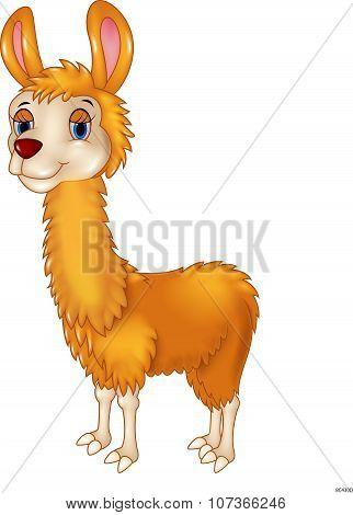 Llama cute cartoon