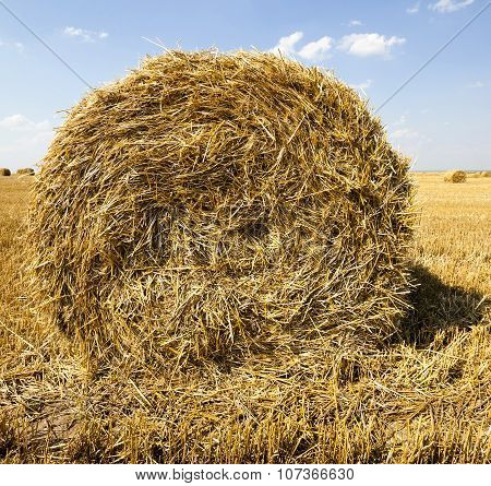 haystacks straw  . summer