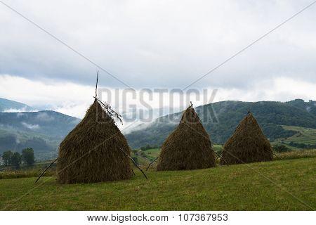 Three Haystacks In The Ukrainian Carpathians