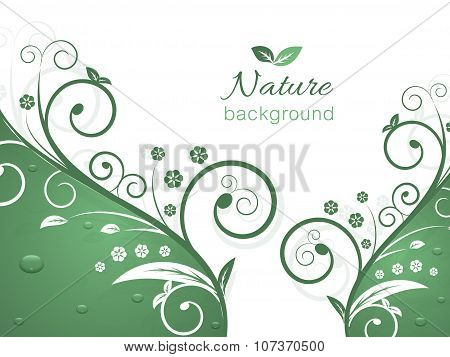 Nature background with spiral swirly pattern and water drops.