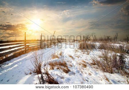 Fence in winter field