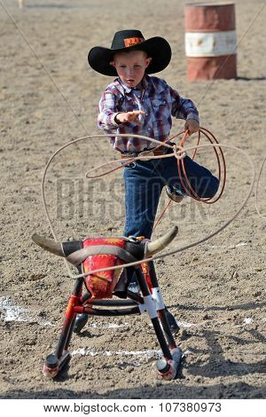 Boy roping dummy calf