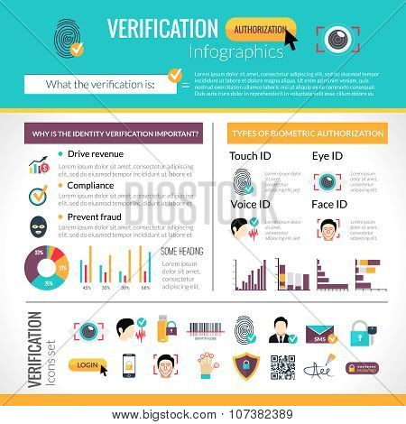 Verification Infographics Set
