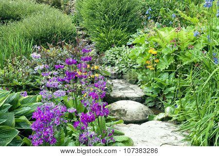 Walkway through cottage flower garden