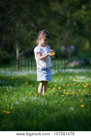 Little Girl Exploring Dandelion