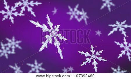 Snowflakes Focusing Background Purple