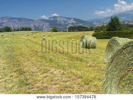 Landscape In Haute Provence