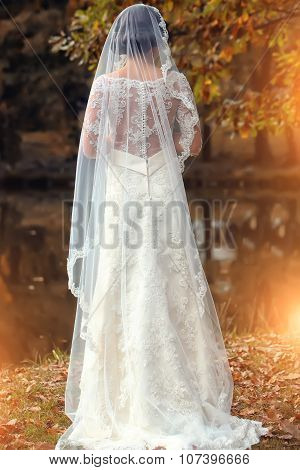 Back View Of Bride