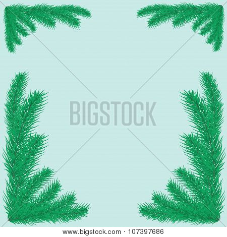 Background with green fir branches.