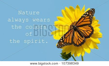 Nature always wears the colors of the spirit - quote with a female Monarch butterfly on a yellow sunflower, against blue sky