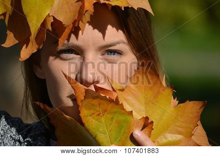 Blue Eyes And Autumn Leaves