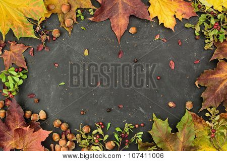 Autumn frame with nuts, cranberry and autumn leaver, top view, copy space.