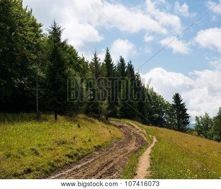 Dirt Road In The Ukrainian Carpathians