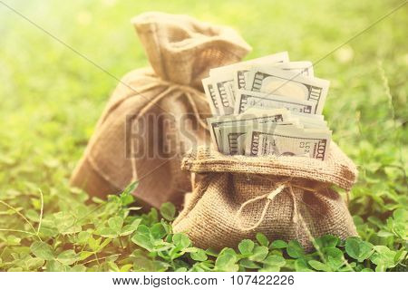 Lot of one hundred dollar bills in bag on grass background