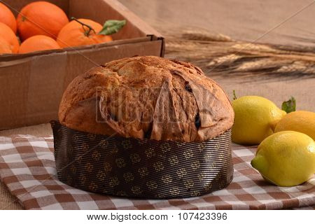 Traditional panetone lemon flavored on rustic ambient.Traditional christmas food.