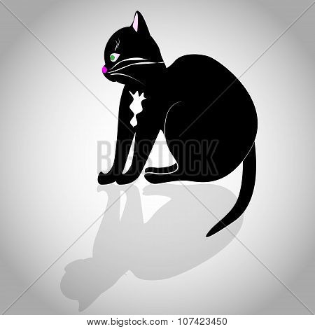Black Cat On A Grey Background