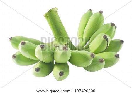 Unripe Green Banana Fruits On A White Background