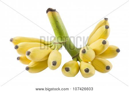 Ripe Yellow Banana Fruits On A White Background