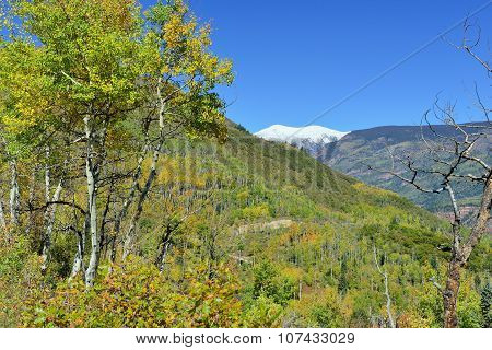 Landscape View Of Snow Covered Mt Sopris In Colorado